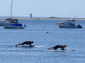 Geese & SUP Class 074
