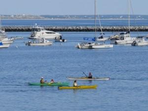 Kayaking & SUPs 015